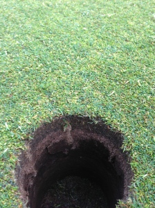 An up close  look at the green surface after the Rotadairon has passed.